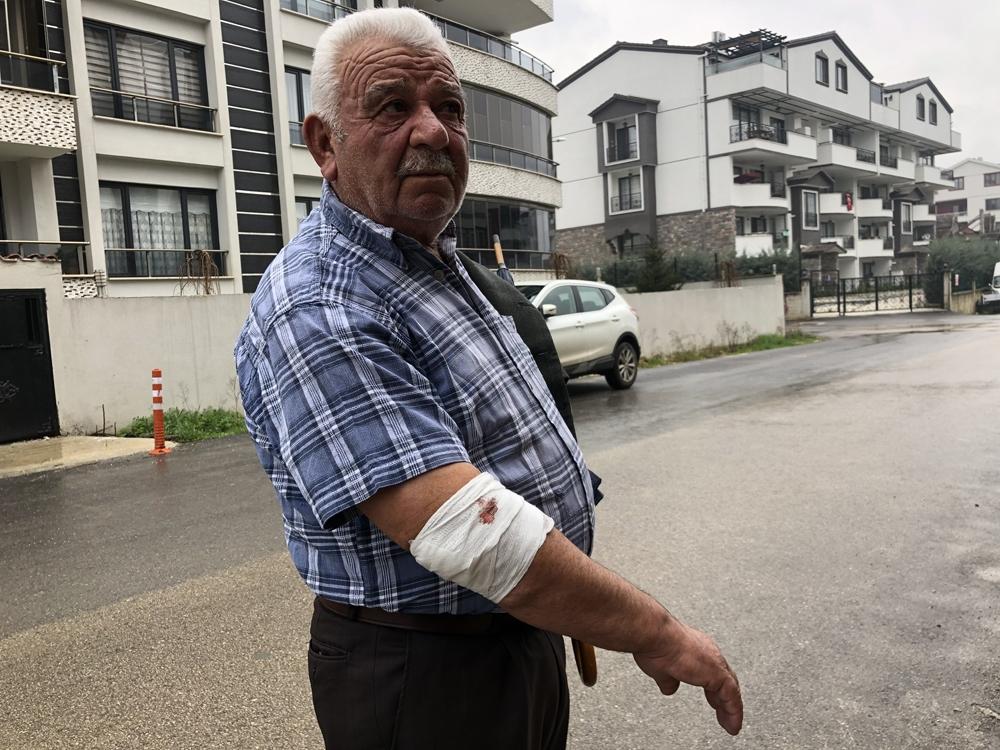 Başıboş köpekler yaşlı adama saldırdı, hastanelik etti