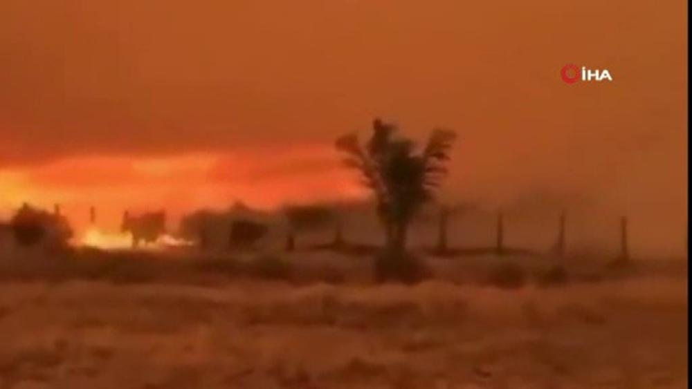 Brezilya'da yangınlar dünyanın en büyük sulak alanını tehdit ediyor