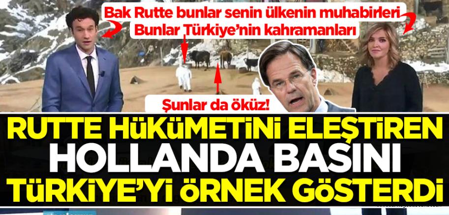 Hollanda basını aşılamada Türkiye'yi örnek gösterdi
