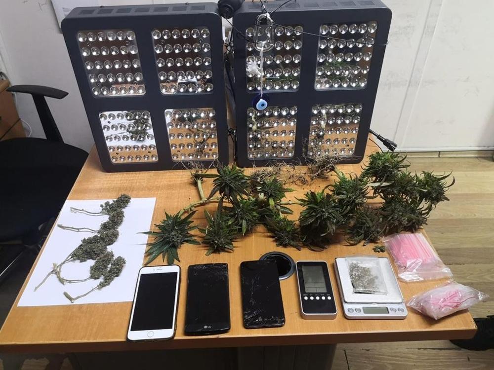 Kadın çığlığı ihbarına giden polis, uyuşturucu tarlasına çevrilen evle karşılaştı