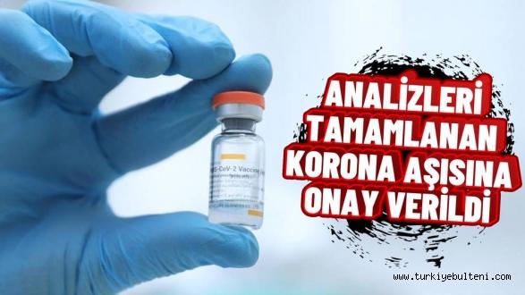 """Türkiye İlaç ve Tıbbi Cihaz Kurumu, Coronavac aşısı için """"Acil kullanım onayı"""