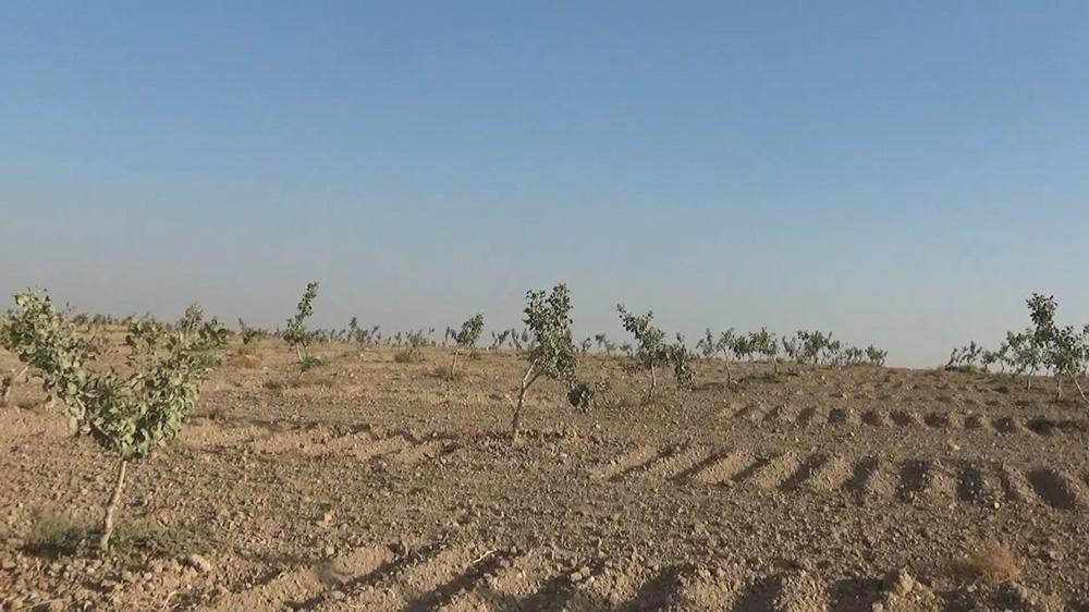 Türkiye'de yağışlar geçen yıla oranla yüzde 22 azaldı, kuraklık tehlikesi baş gösterdi